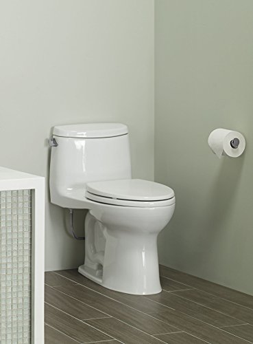 Most Powerful Best Flushing Toilet 2020 Reviews
