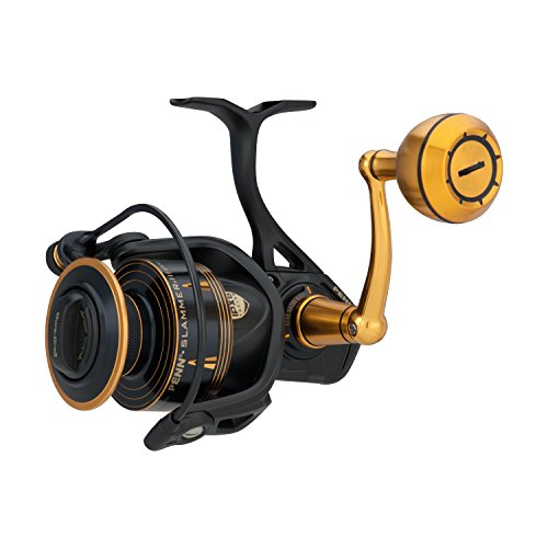 spinning reel saltwater reviews for Heavy duty