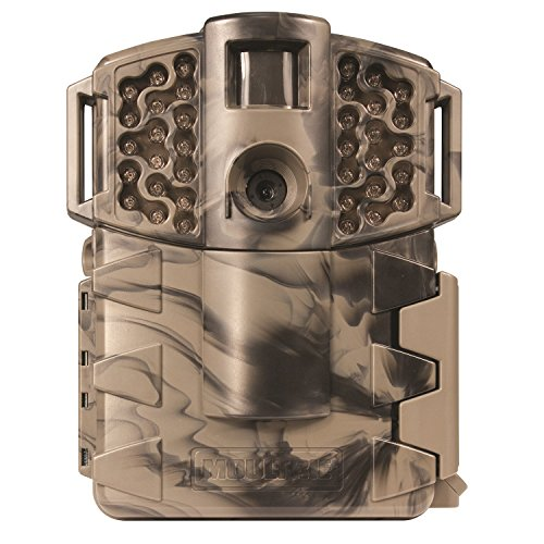 camouflage trail camera