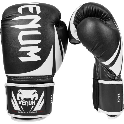 Best boxing glove for beginners