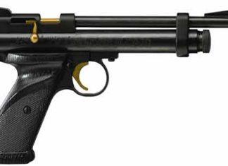Airguns or Air Pistol
