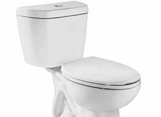 Flushing Toilets